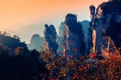 Yangjiajie Scenery Pictures