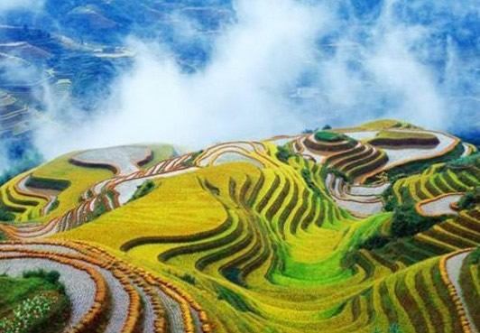 Longsheng Longji Rice Terraces